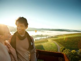 Tours for Two Yarra Valley