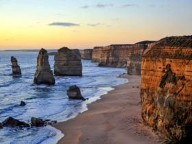 Visit the amazing 12 apostles plus the Lochard Gorge, Gibson Steps, Foresr walk,koalas and more.