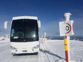 Premium coach transfers to Mt Hotham & Dinner Plain