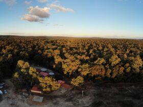 Jarrahfall Bush Camp, Dwellingup, Western Australia