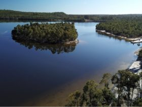 Lake Kepwari, Cardiff, Western Australia