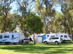 Miami Holiday Park, Falcon, Western Australia