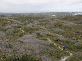 Bibbulmun Track, Kalamunda, Western Australia