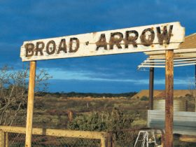 Broad Arrow, Kanowna, Western Australia