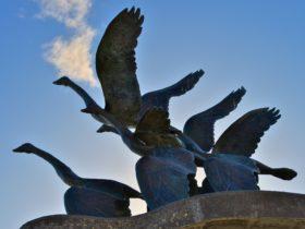 Catalpa Memorial