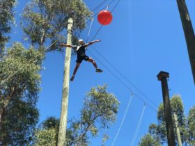 Leap of Faith at Swan Valley Adventure Centre