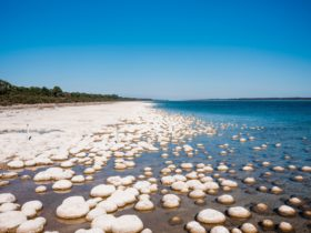 Yalgorup National Park, Preston Beach, Western Australia