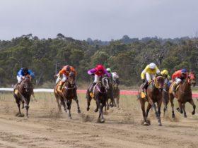 Collie Races, Collie, Western Australia