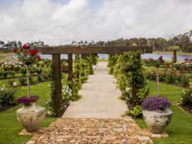 Laurance Wines, Wilyabrup, Western Australia