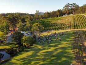 Rockcliffe Winery, Denmark, Western Australia