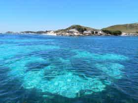Bucket List Dive, Fremantle, Western Australia