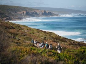 Inspiration Outdoors Walking Tours, Perth, Western Australia