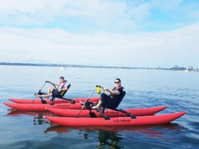 Perth Waterbike Adventures, Crawley, Western Australia